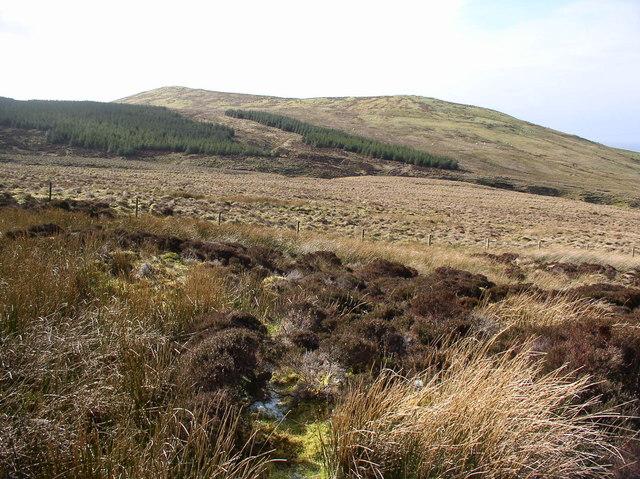 Moorland Crailoch Burn