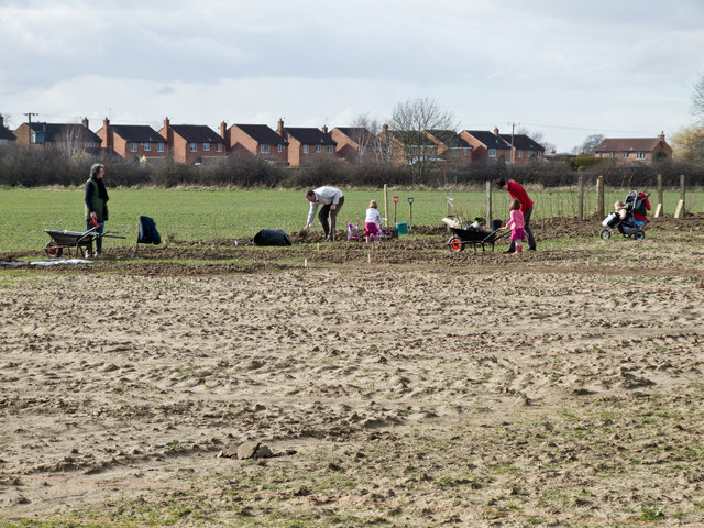 New Allotment Scheme behind Willow Park and Field Head