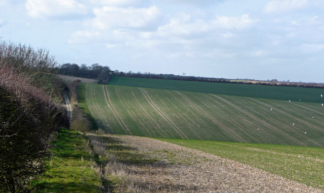 Wolds scenery