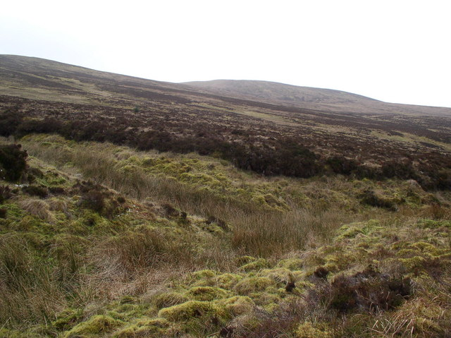 Moorland Dunnack Burn