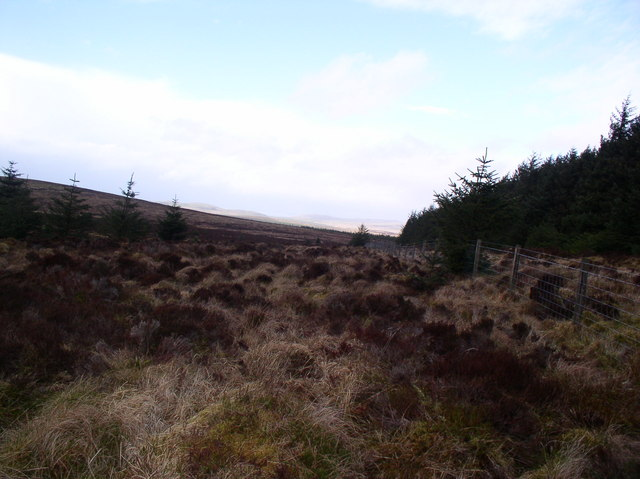 Moorland Arecleoch Forest