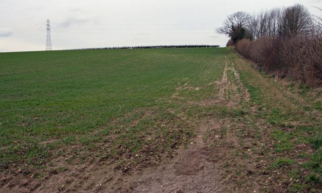 A Field beside Westfield Road, Eppleworth