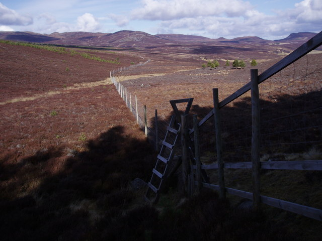 Deer Fence on Moorland