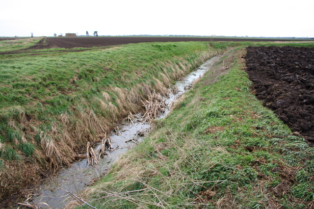 Drain and Fields, Chatteris Fen