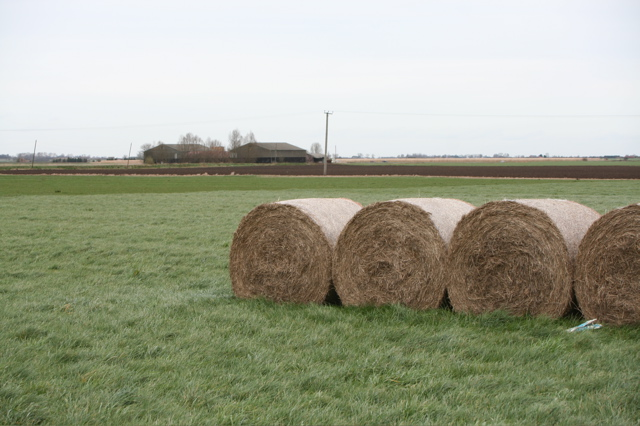 Holwoods House Farm and Straw Bales