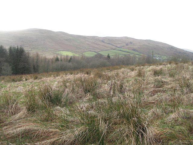 Rough ground, West Kilbride