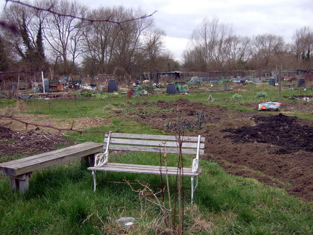 Fairacres allotments with seat