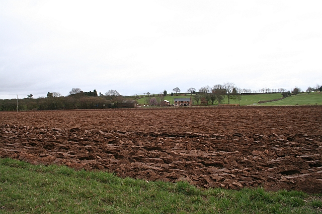 Ploughed-up Footpath