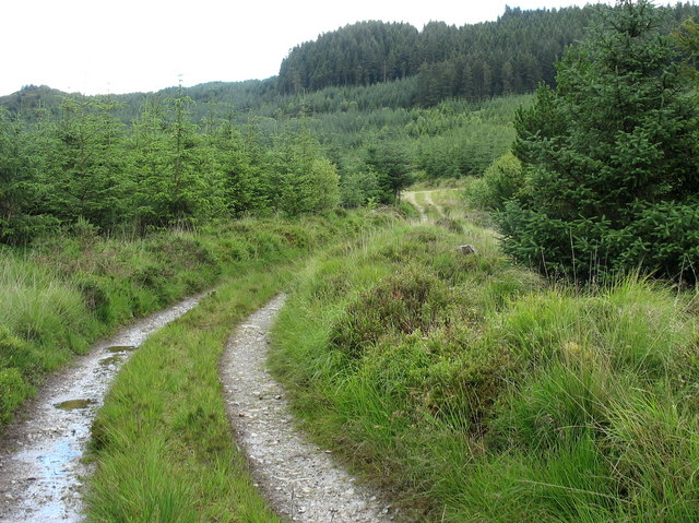 The old drovers' road south to Bwlch Goriwaered and Llanfachreth