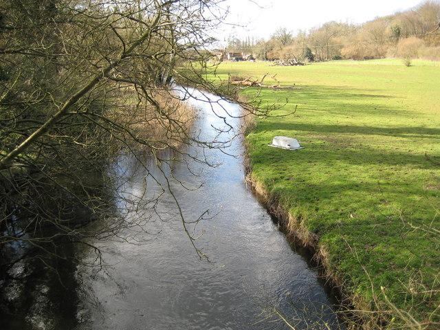 River Lee near Bayfordbury (1)