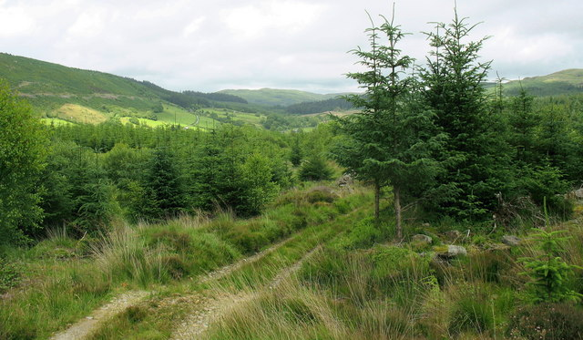 View north-east across forest land towards the Afon Wen valley