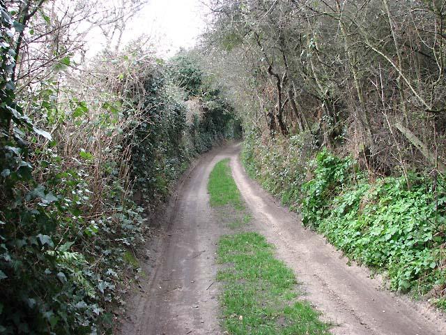 Thain's Lane