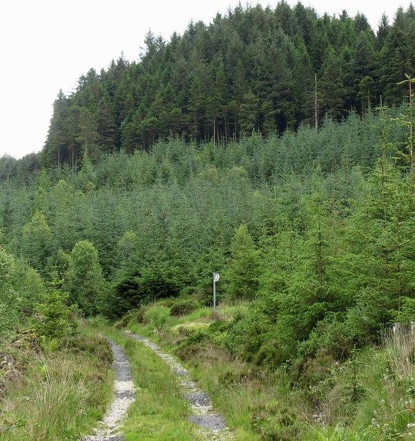 A short cut to Llanfachreth