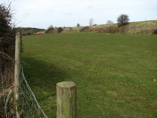 View towards railway line across pasture