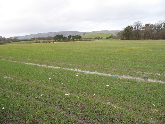 Litter strewn field, Portnauld