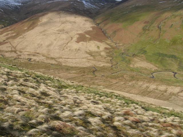Faugh hillside towards Burby Shank