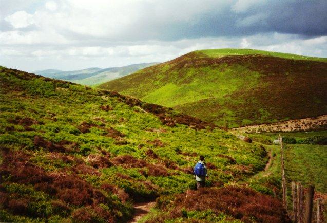 Offa's Dyke Path rounding Moel y Plas