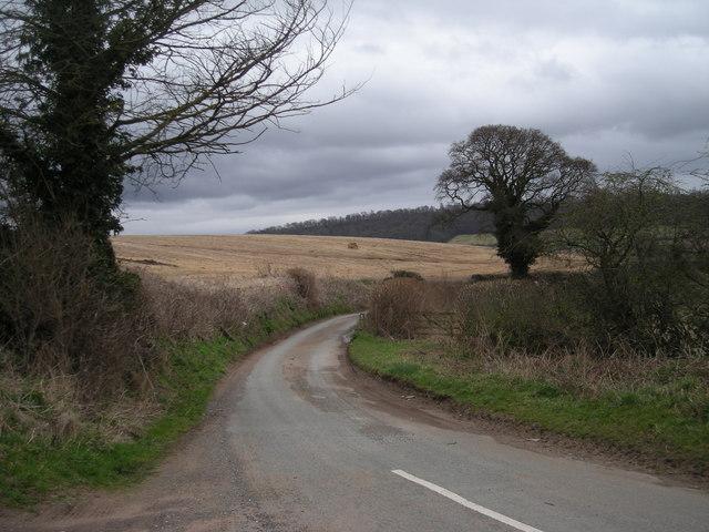 Lane to Homer