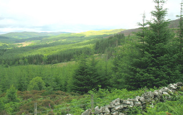 The Afon Wen Forest from the forest/moorland boundary gate