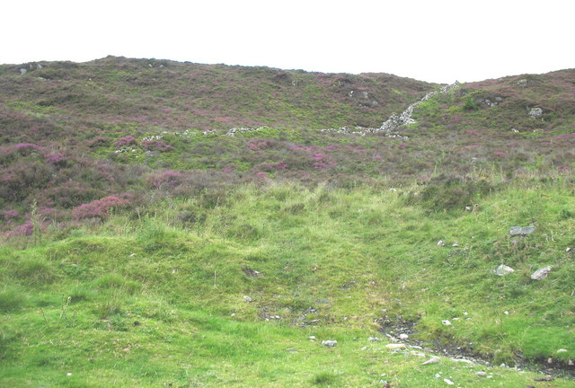 Heather-clad hill on the western side of the Bwlch Goriwaered col