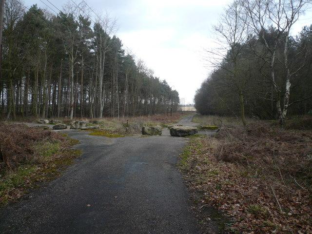 Sherwood Pines Forest Park - Crossroads