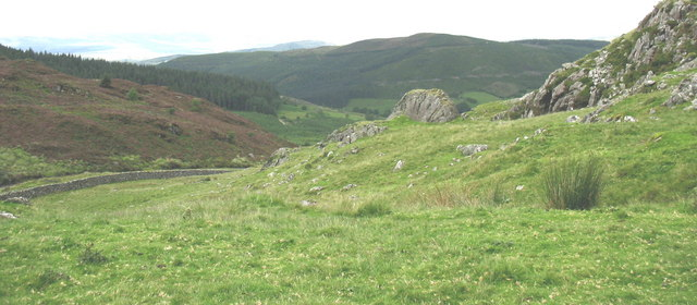 View north westwards towards the forest from the lower slopes of Rhobell Fawr