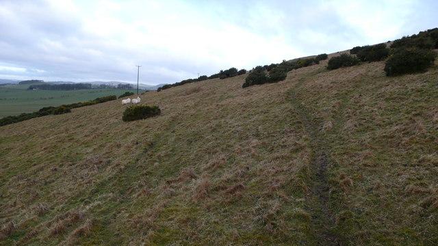 Hillside, Broughton