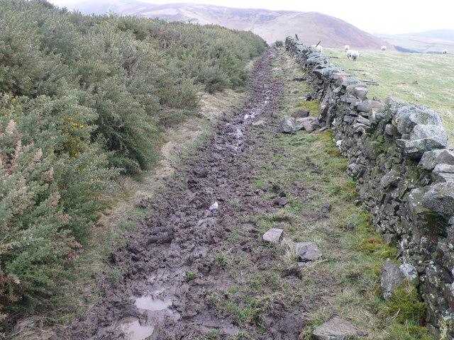 Broughton - Skirling Path