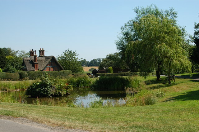 Village pond at Osmaston