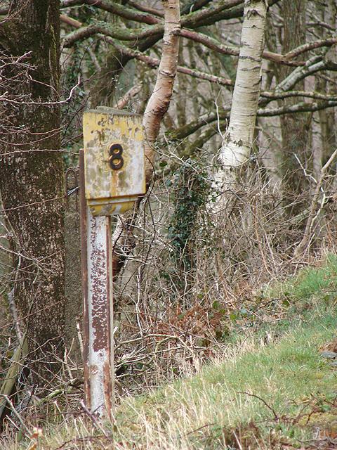 Vale of Rheidol Railway Milepost