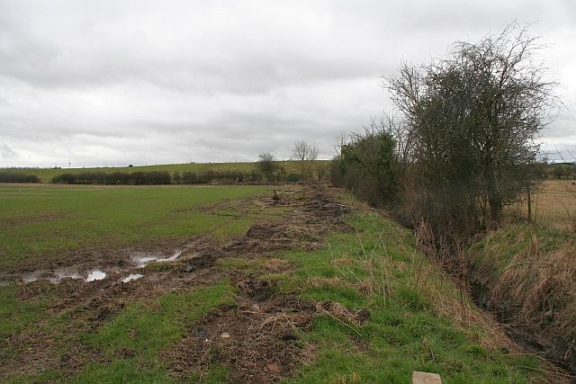 Field Ditch, Welland Stone
