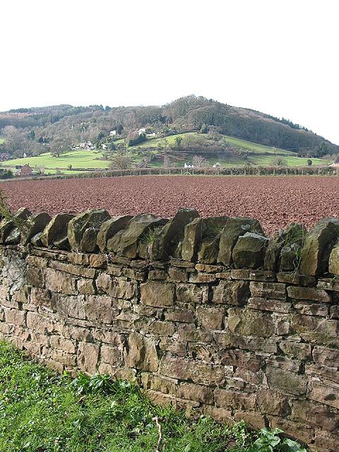 Stone wall in the churchyard, Lea