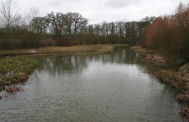 Pond near the Stanks