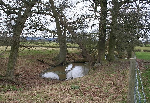 Pond near Duckswich