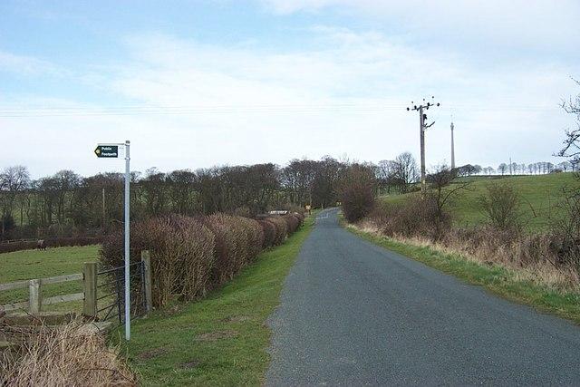 Hedgerow on Cross Lane