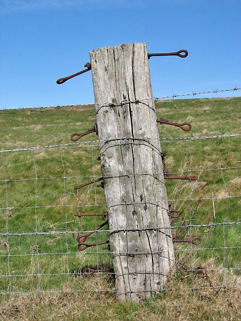 A much used old fence post