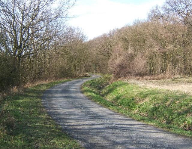 Lane approaching Langley Wood