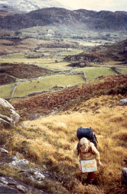 Fields of Breanlee
