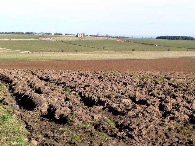 Ploughed land at Pittarthie