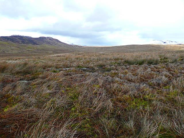 Moorland and bog in upper Glen Beich