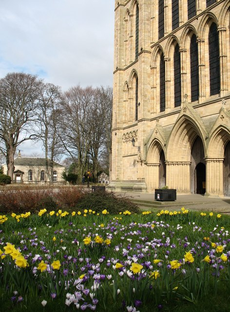 Flowers by the Minster