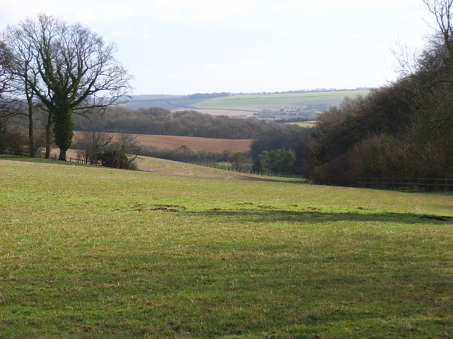 Farmland, Lambourn Woodlands