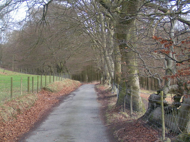 Lane to Cwm