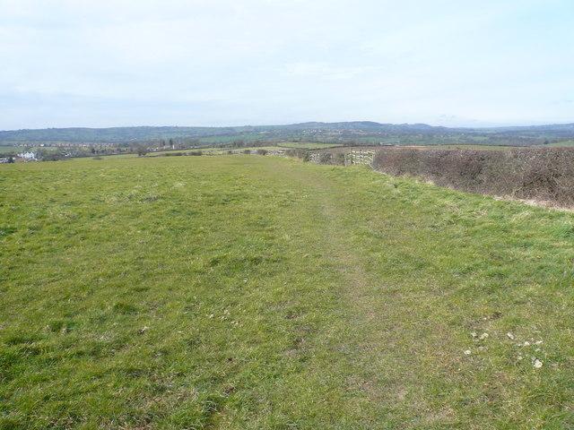 Footpath and Hedgerow near Ufton Fields