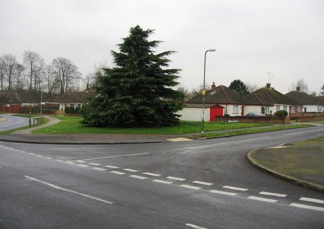 Woodroffe Drive