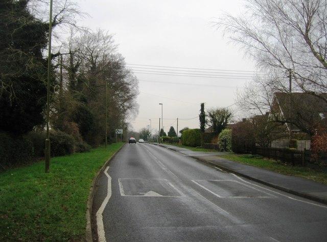 Pack Lane
