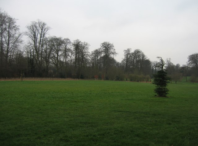 Formal parkland at Down Grange