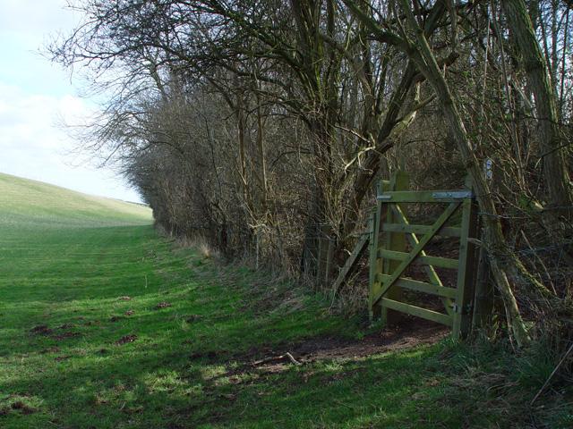 Gateway to Deep Dale Woods, above North Dalton