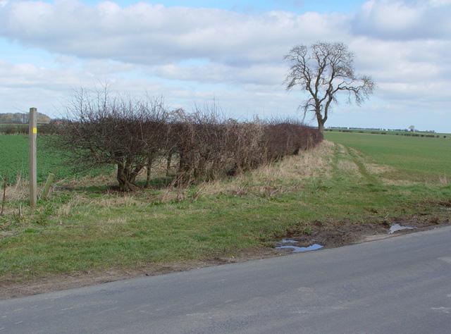 Footpath to Tibthorpe, near Huggate, East Yorks.