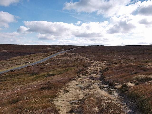Track across moorland heading to New Way